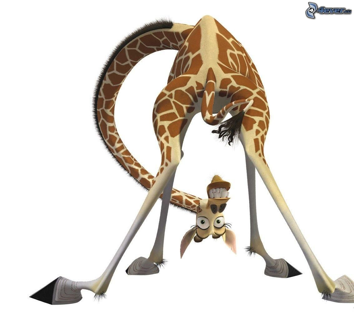 Melman - Girafe dans madagascar ...