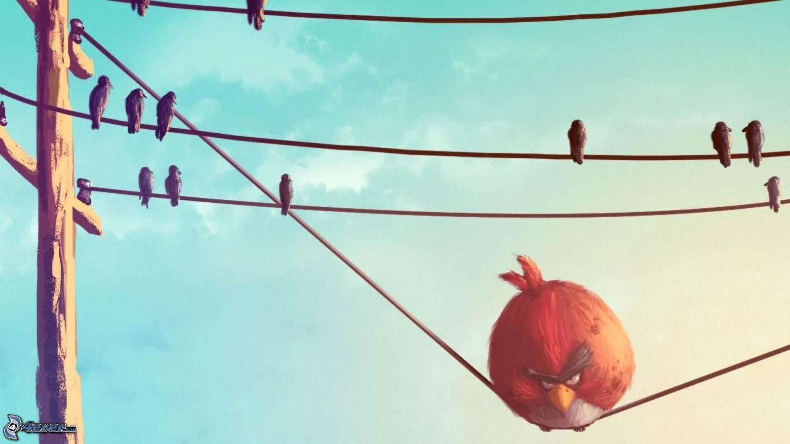 Angry Birds On Wire