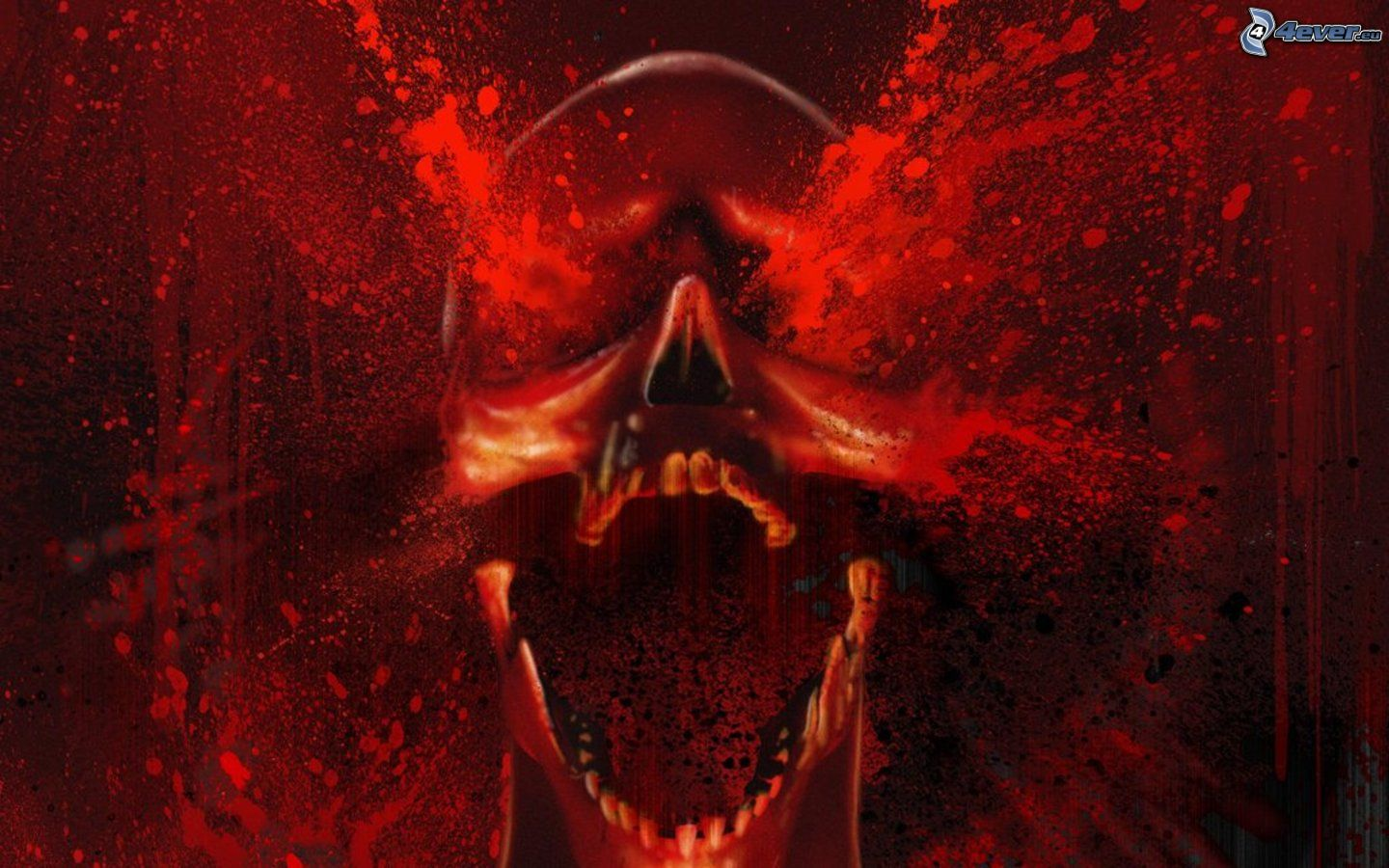 Bloody Love Wallpaper : Skull