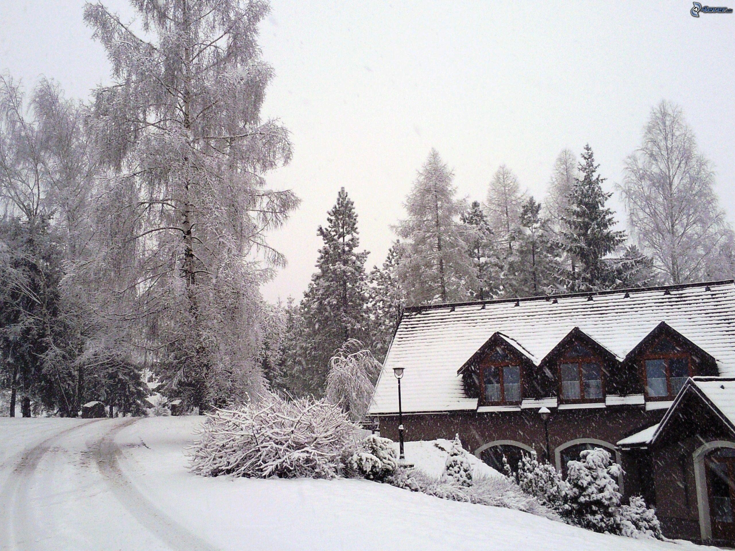 Chalet Summer Cottage Snowbound Snow-covered Snowy Snow Winter ...