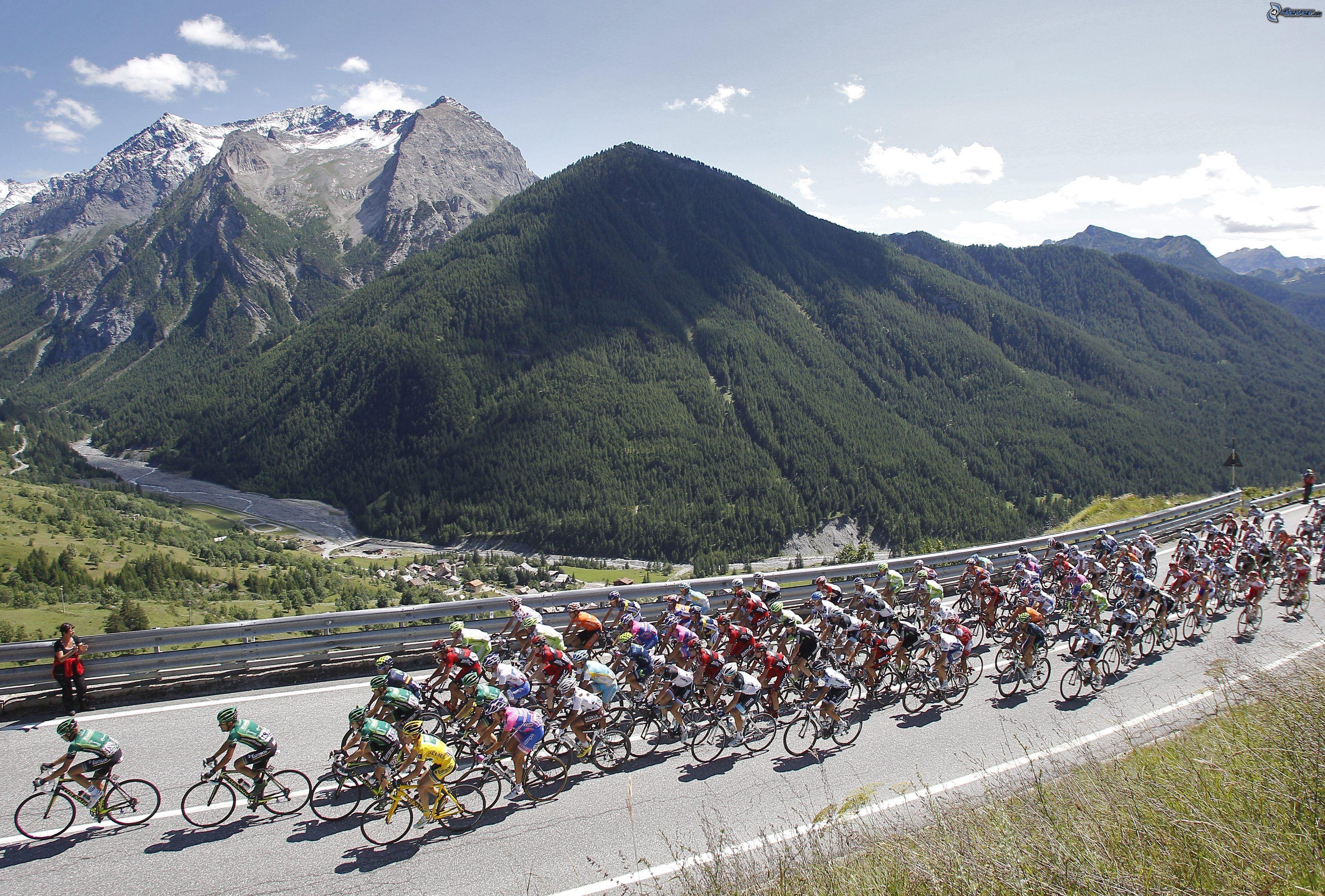Tour De France Road Signs