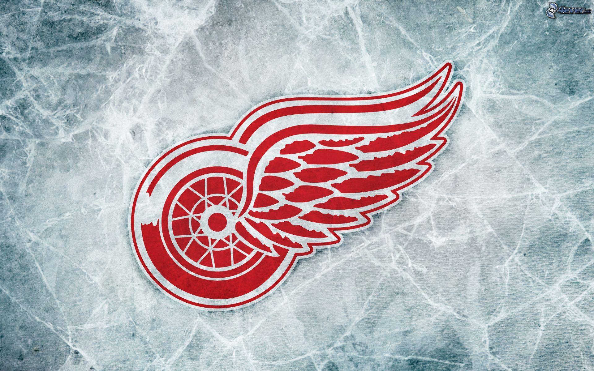 Detroit Red Wings Nhl